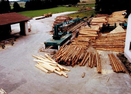 """Holz von Sturm """"Wiebke"""""""
