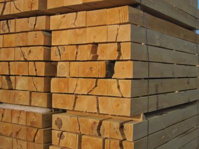 Buchenbrennholzbalken